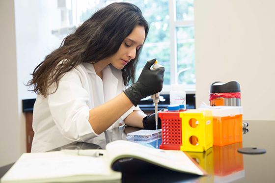 A student works on her own in the lab