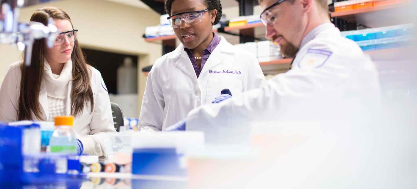 Pharmacy professor oversees student research in lab