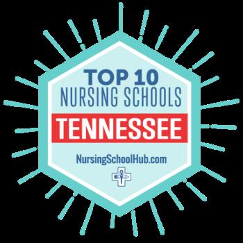 Top 10 nursing badge
