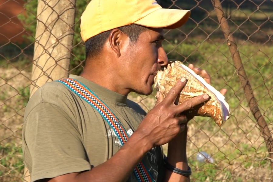 A man blows into a conch shell.