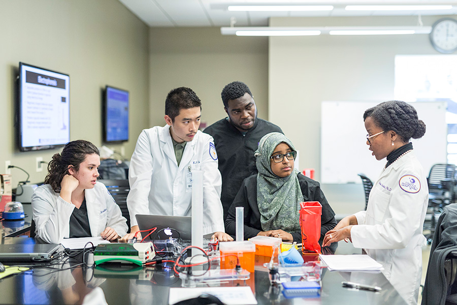 Students learning in the College of Pharmacy and Health Sciences