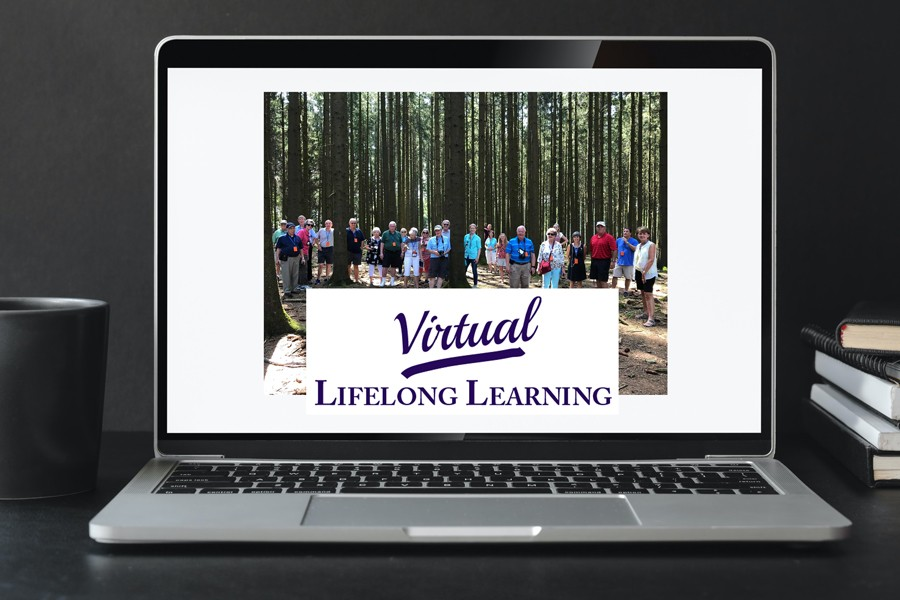 Virtual Lifelong Learnign Logo