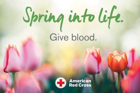 News - Spring into Life Red Cross