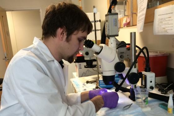 Dan Midgett in lab