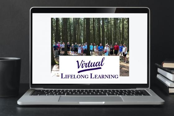 Computer screen that says Virtual Lifelong Learning