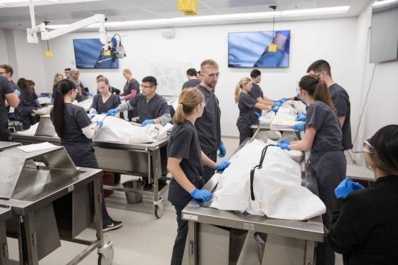 Students in the PA School anatomy lab